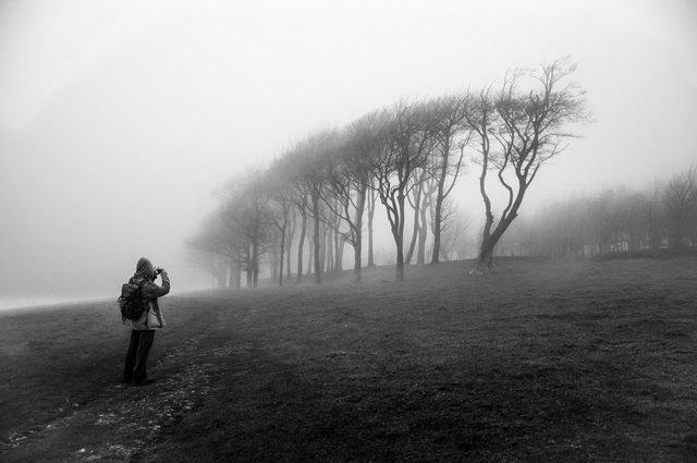 Chanctonbury Ring v hmle