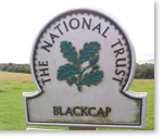 blackcap sign